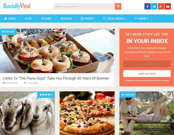 SociallyViral responsive WordPress Theme