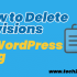 How to Delete Revisions in WordPress Blog